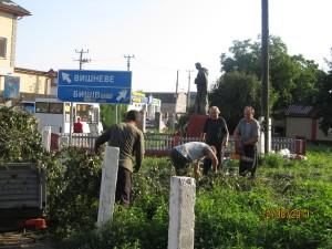 жіві дерева, берези з памятника невідомого солдата в с. Софіївська Борщагівка пиляють без жалю і сорому