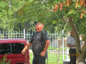 Рейдери ТОВ Домінант плюс село Софіївська Борщагівка 05.07.2011 року редерський захват 41