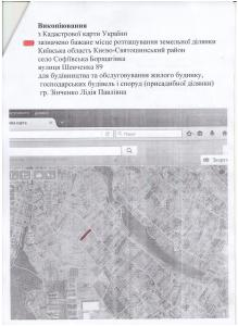 Викопіювання з кадастрової карти Шевченка 89