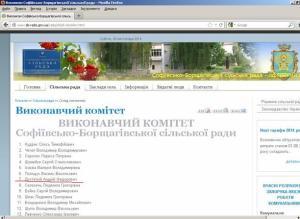 Виконавчий комітет 2012 рік Достатній Андрій Федорович
